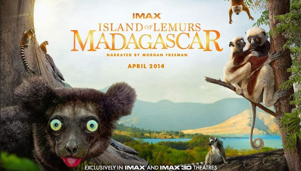 island-of-lemurs-madagascar1-DM