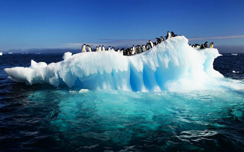 Por Qué Hace Más Frío En El Polo Sur Que Norte Las