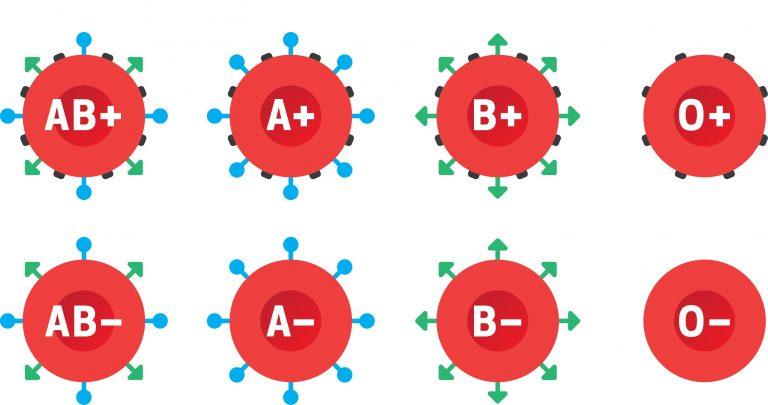 Los grupos sanguíneos en tu cuerpo